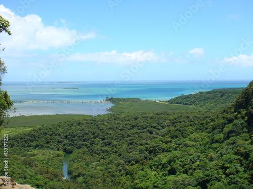 ピナイサーラの滝からの展望(沖縄県西表島)