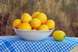 Yellow lemons  in the white bowl
