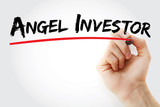 Hand writing Angel investor with marker, concept background