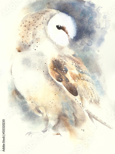 Fotobehang Uilen cartoon Barn owl watercolor painting handmade animal illustration