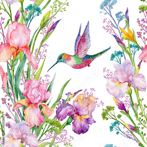 iris flowers and hummingbirds .watercolor seamless pattern - 133328673
