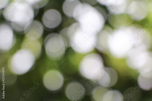 Poster Bokeh natural color  warm background. Filter leaf of the tree