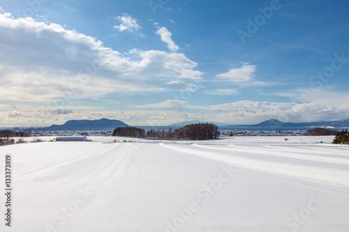 雪原と函館湾遠望