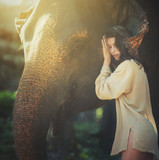 beautiful young woman posing with happy elephant