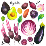 Watercolor illustration with farm grown products.Vegetables set: avocados, onions, potatoes, beets, eggplant, cabbage, spinach. Fresh organic food. Violet.