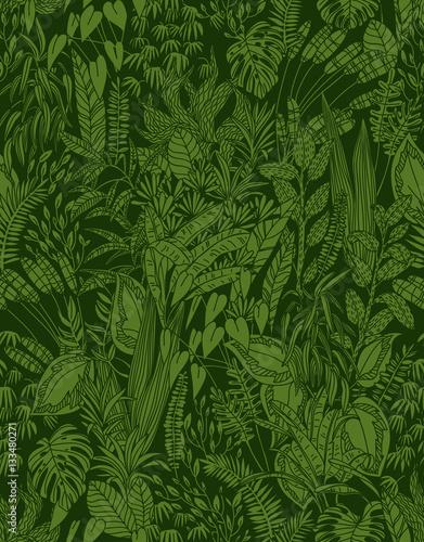 bezszwowa tekstura z różnymi zielonymi roślinami, wektorowa ilustracja