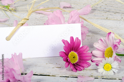 Leinwandbild Motiv Romantik, Liebe, Sehnsucht, Gutschein: Margeriten und Kirschblüten auf weißem Holz mit Papierschild :)