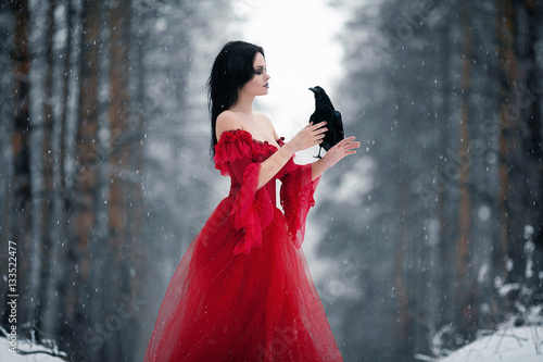 Woman witch in red dress and with raven in her hands in snowy fo Poster