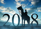 Silhouette of a woman on a horse at sunset. Forward to the New Year 2018. - 133526827