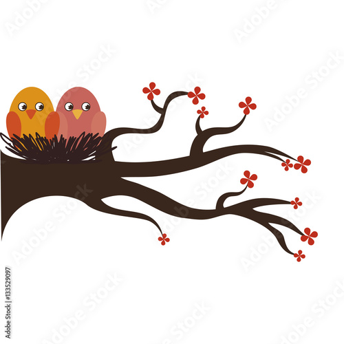 Poster cute birds decorative card vector illustration design