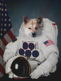 Dog astronaut. Flag of the United States in background. Elements of this image furnished by NASA. - 133556882