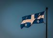 Quebec Flag - Fleurdelyse