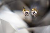 Beautiful wedding jewellery earings detail