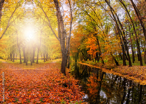 Papiers peints Orange eclat fantastic autumn landscape. colorful foliage on the trees glowing in the sunlight, reflected in water, in the park. wonderful picturesque background. color in nature.