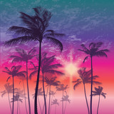 Tropical palm tree and sunset sky. Vector illustration - 133624024