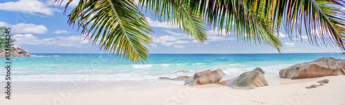 panorama de plage paradisiaque des Seychelles sous les cocotiers  - 133644245