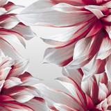 Dahlia futuristic background