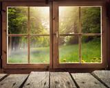 Drewniana chata z widokiem na las oświetlenie wiosną / wczesnym latem ze słońcem