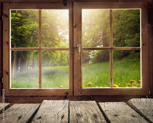 Holzhütte mit Ausblick auf eine Waldlichtung im Frühling/Frühsommer bei Sonnenschein - 133696278