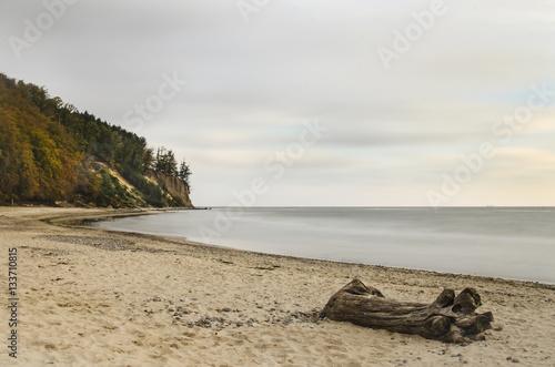 piękny krajobraz klif w Gdyni Orłowo nad Bałtykiem w Polsce - 133710815