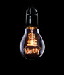 Hanging lightbulb with glowing Identity concept.