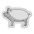 pig animal farm in the field vector illustration design