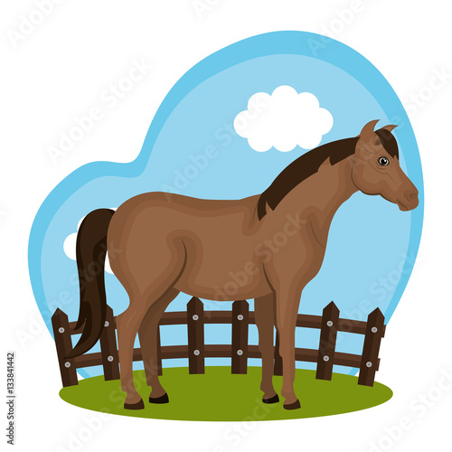 Poster horse animal farm in the field vector illustration design