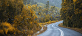 Road and mountains in the Tasmanian countryside - 133856641