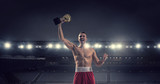 Professional box champion . Mixed media . Mixed media