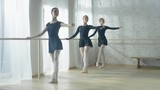 Three Beautiful Young Ballerinas Doing Stretching Near Bar. Morning Exercises. Shot on a Bright and Sunny Morning in Modern Studio. Shot on RED EPIC-W 8K Helium Cinema Camera.