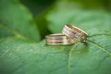 Closeup of wedding rings on flower