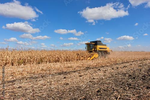 Poster Agricultural landscape cornfield crop corn maize combine