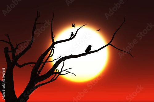 3D tree against a sunset sky with birds