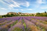 Saignon village, Provence, France