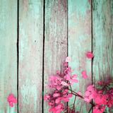 pink flowers on vintage wooden background, border design. vintage color tone - concept flower of spring or summer background