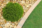 Low Maintenance Landscaping - 134090209
