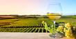 Quadro Vin blanc sur fond de vigne en France