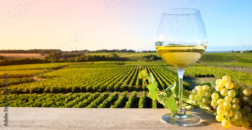 Papiers peints Miel Vin blanc sur fond de vigne en France