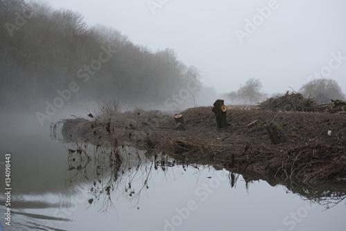 Poster misty river