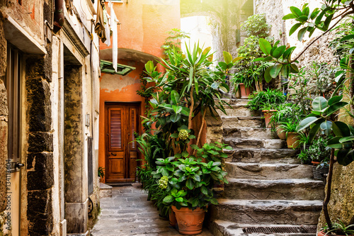 Old stone stairs decorated with green plants, Vernazza, Cinque Terre, Italy.