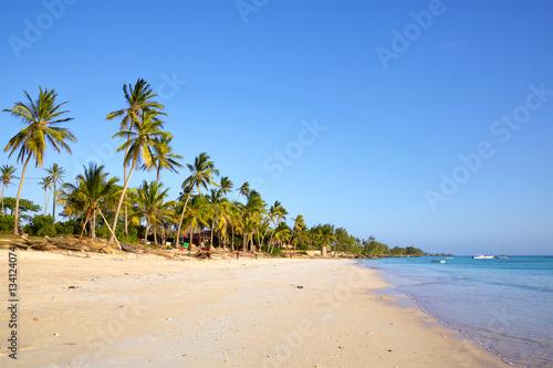 Zanzibar Sand beach with palm trees, Kizimkazi, Zanzibar