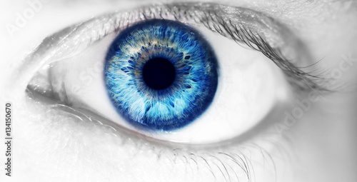 beautiful human eye, macro, close up  blue, yellow, brown, green - 134150670