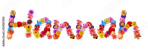 Poster Flower Name Hannah