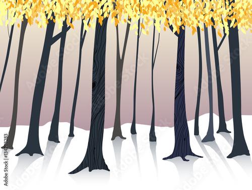Hand drawn forest in autumn season