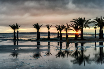 Palm trees reflect on flooded beach after storm at sunset