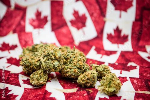 Foto op Aluminium Canada canadian marijuana