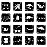 Nature items icons set