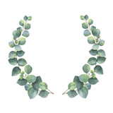 Watercolor vector wreath with silver dollar eucalyptus leaves and branches. - 134329826