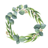 Watercolor vector round wreath with silver dollar eucalyptus. - 134330010