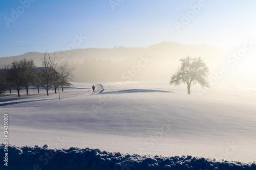 Winterlandschaft, Österreich, Neuschnee, Alpen Poster
